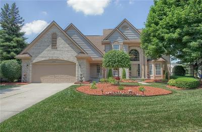West Bloomfield, West Bloomfield Twp Single Family Home For Sale: 7542 Greenway Lane