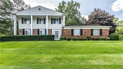 White Lake Single Family Home For Sale: 141 Allen Lake Drive