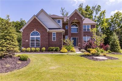 Lyon Twp Single Family Home For Sale: 23556 Stoneleigh Drive