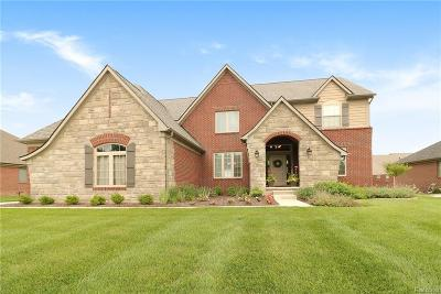 Rochester Hills Single Family Home For Sale: 3840 Somerset Circle