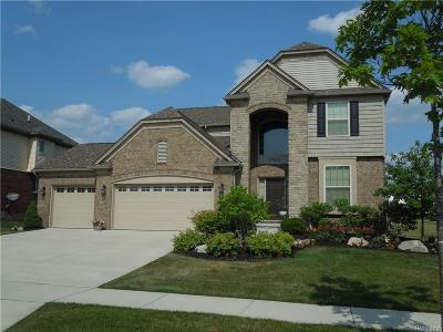 Novi Single Family Home For Sale: 27626 Amadora Circle