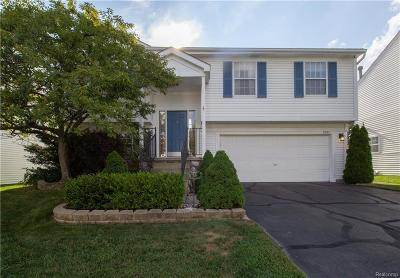 Garden City, Westland, Plymouth Twp, Canton Twp Single Family Home For Sale: 1990 W Williams Circle