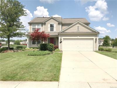 Waterford Single Family Home For Sale: 739 Deer Path Trail