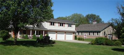 Ray Twp Single Family Home For Sale: 64505 Wolcott