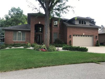 Waterford Twp Single Family Home For Sale: 6015 Rolton Court