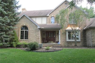 Macomb County, Oakland County, Wayne County Single Family Home For Sale: 24675 Graves Avenue