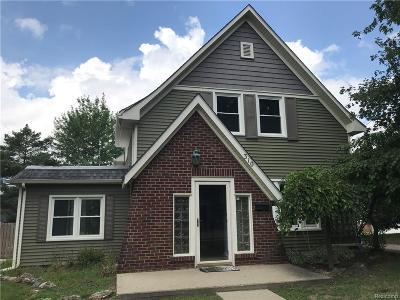 Romeo Vlg, Bruce Twp, Washington Twp Single Family Home For Sale: 310 Sisson Street