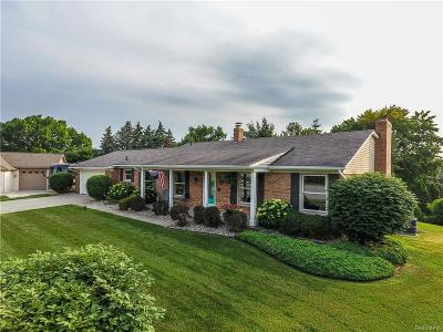 Sterling Heights, Shelby Twp, Utica Single Family Home For Sale: 56791 Foxcroft Court