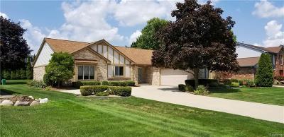Novi Single Family Home For Sale: 24795 White Plains Drive