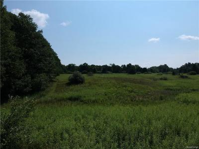 Addison Twp Residential Lots & Land For Sale: Vac 8 Lake George