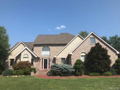 Rockwood Single Family Home For Sale: 32081 Liparoto Drive