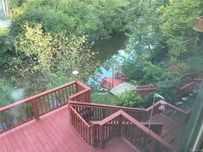 Northville Single Family Home For Sale: 18137 Cascade