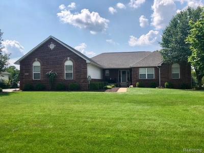 Lyon Twp Single Family Home For Sale: 20871 Oak Tree Drive