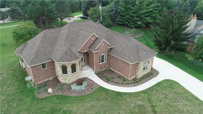 Novi Single Family Home For Sale: 29799 Martell Court