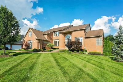 Oakland Twp MI Single Family Home For Sale: $699,000