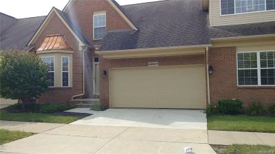 Canton, Canton Twp Condo/Townhouse For Sale: 48643 Stonebriar Drive #94