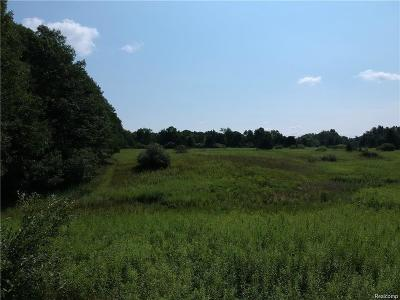 Addison Twp Residential Lots & Land For Sale: Vac 6 Lake George