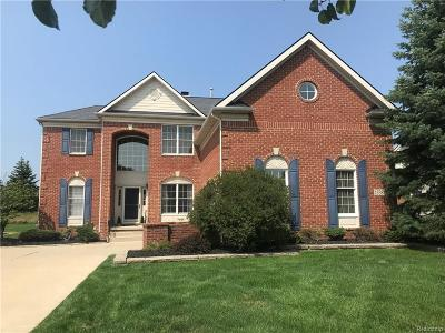Northville Single Family Home For Sale: 15381 Bay Hill Drive