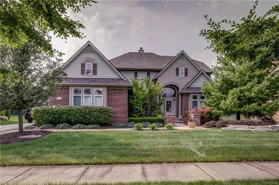 Novi Single Family Home For Sale: 30315 Pennington Lane