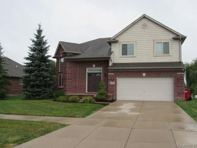 Macomb County, Oakland County Single Family Home For Sale: 56934 Holiday Pine Drive