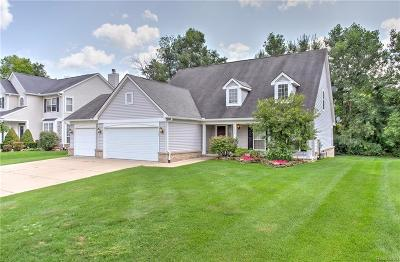 Macomb County, Oakland County Single Family Home For Sale: 3172 Hidden Timber Drive