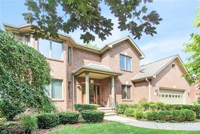 Rochester Hills Single Family Home For Sale: 1148 Chesapeake