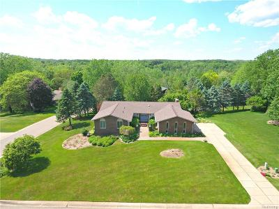 Oakland Twp Single Family Home For Sale: 3431 Aquarious Circle