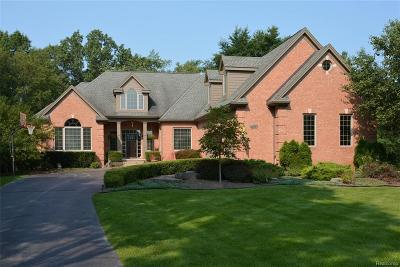 Brighton Single Family Home For Sale: 2396 Woodvale Trail