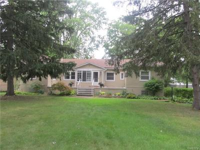 Rochester Hills Single Family Home For Sale: 3450 Emmons Avenue
