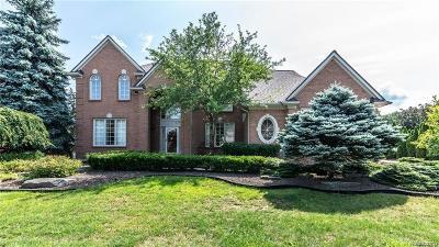 Novi Single Family Home For Sale: 25724 Cody Lane