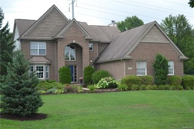 Lyon Twp Single Family Home For Sale: 54814 Walnut Drive