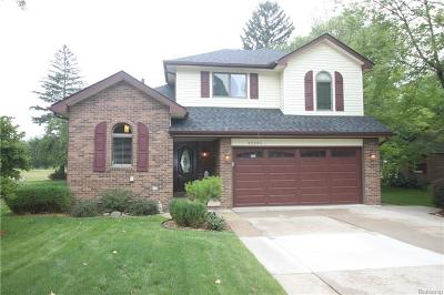 Macomb Twp Single Family Home For Sale: 45343 Deneweth Rd