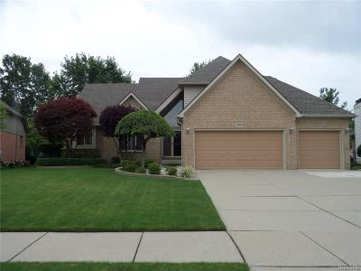 Macomb Twp Single Family Home For Sale: 19828 Middle Brook Drive