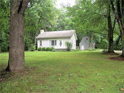 Oakland County Single Family Home For Sale: 27390 N Dixboro Road