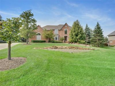 Oakland County Single Family Home For Sale: 3415 Vineyard Hill Drive