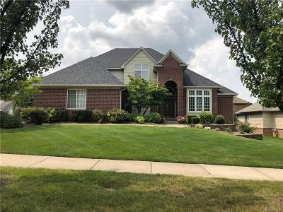 Auburn Hills Single Family Home For Sale: 3391 Paramount Lane