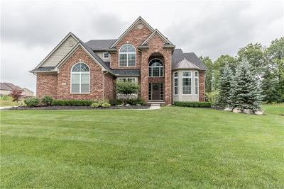 Lyon Twp Single Family Home For Sale: 23824 Millwood