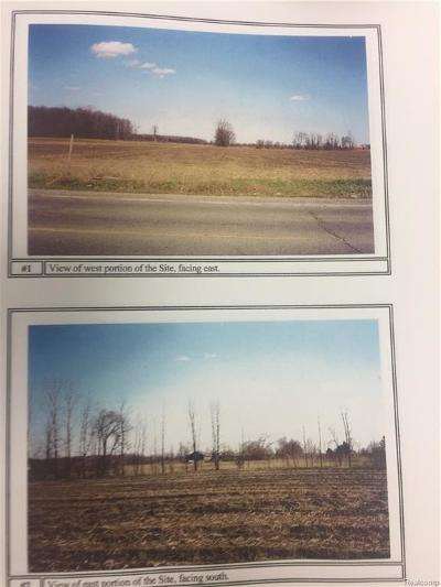 Armada Twp Residential Lots & Land For Sale: Romeo Plank Road