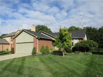 Macomb Twp Single Family Home For Sale: 45210 Angie Drive