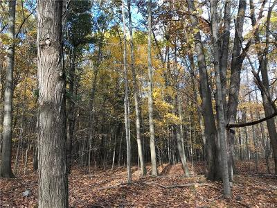 Addison Twp Residential Lots & Land For Sale: Vac 2 Lake George