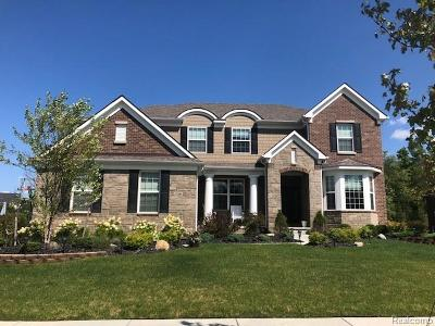 South Lyon Single Family Home For Sale: 22821 Country Club Drive