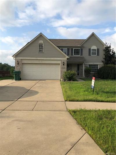 Van Buren, Van Buren Twp Single Family Home For Sale: 42802 Bradley Drive