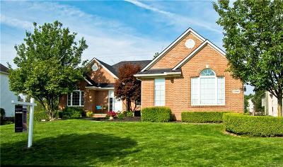 Lyon Twp Single Family Home For Sale: 25905 Cobblers Lane