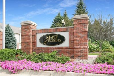 Commerce Twp Condo/Townhouse For Sale: 8203 Chesapeake Cir Chesapeake Circle