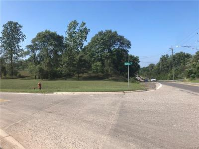 Rochester, Rochester Hills Residential Lots & Land For Sale: School Road