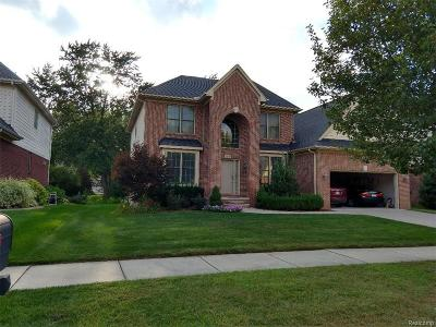 Troy Single Family Home For Sale: 6165 Mayapple Drive