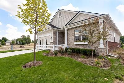 Canton, Canton Twp Single Family Home For Sale: 49060 Merriweather Court