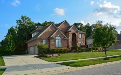 Washington Twp Single Family Home For Sale: 13086 Burningwood Drive
