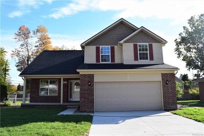 Auburn Hills Single Family Home For Sale: 3145 Orchard View Court