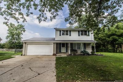 Westland Single Family Home For Sale: 37204 Booth Avenue